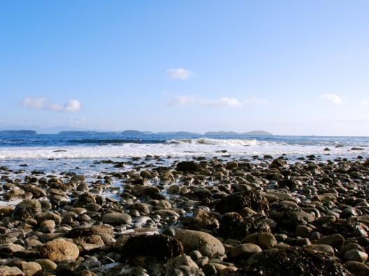 pebbly, surf beach