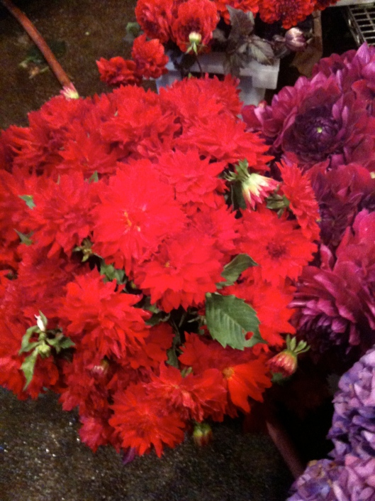 Local New Jersey Dahlias at the Chelsea Wholesale Flower Market