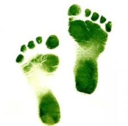 go-green-baby-steps2
